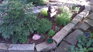 FS Garden 5